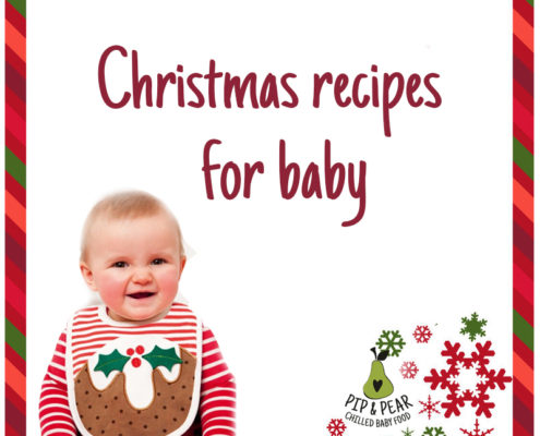 Christmas recipe for baby with logo 2