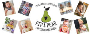 organic baby food chilled pip and pear weaning